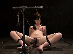 Redhead Marie bound in metal,...