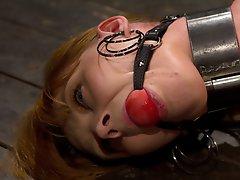 Redhead Marie bound in metal,...