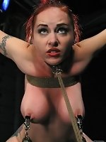 On her knees with her breasts bound,...